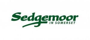 Sedgemoor-District-Council-1280-1560x690_c